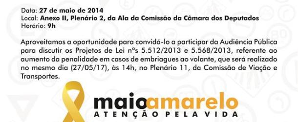 Audiência Pública em Brasília – Maio Amarelo
